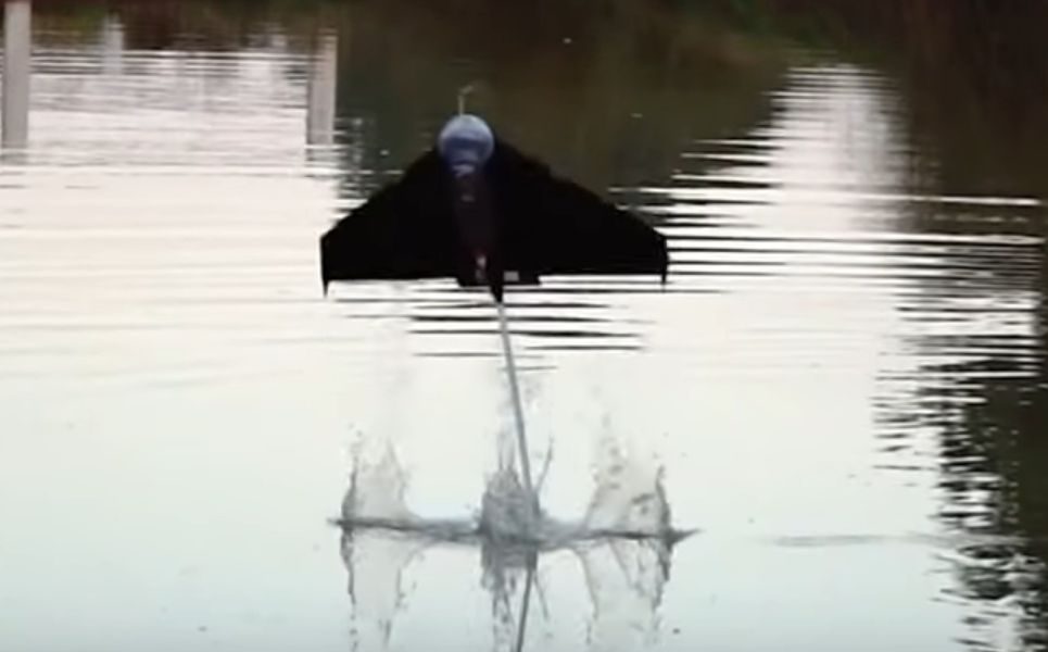 This Robot Fish Can Jump From The Water And Then Fly