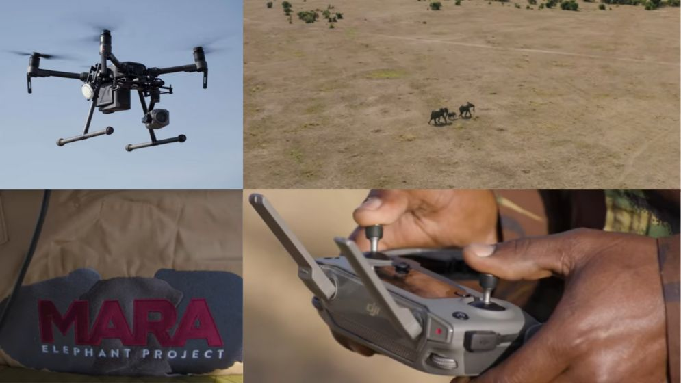 Drones Are Used To Protect Elephants From Hunters.