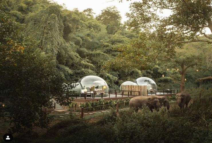 In Thailand, Vacationers Can Live And Sleep In Glass Balls Next To Elephants