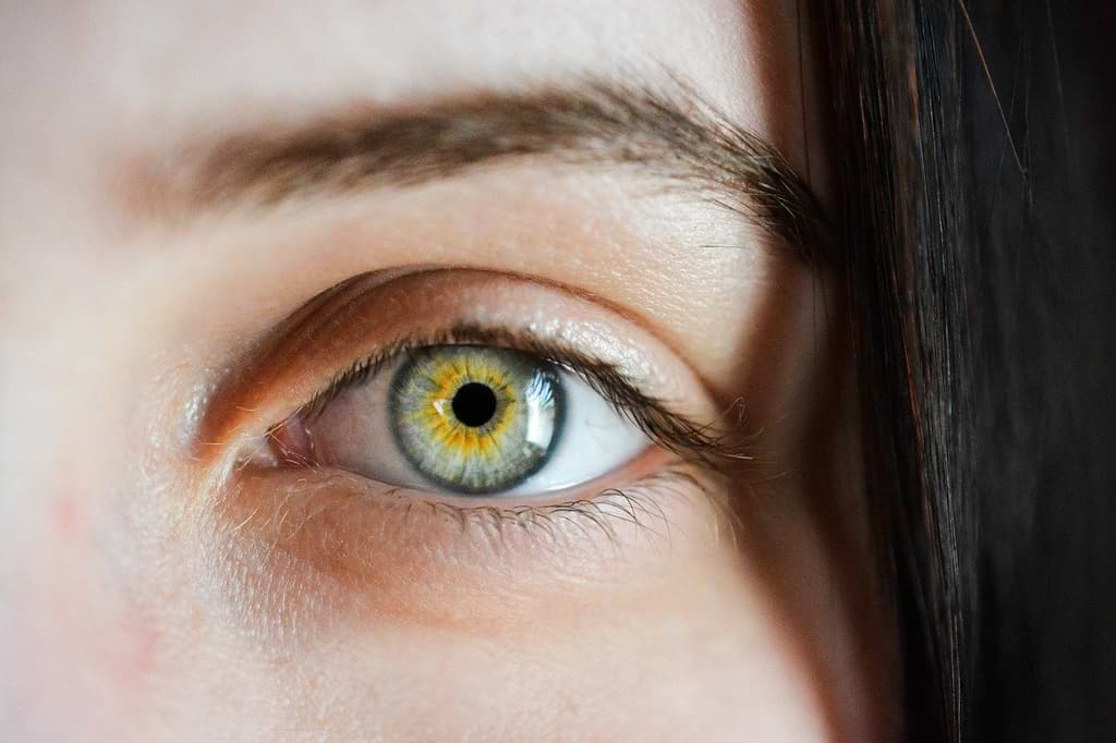 Eye Has Self-cleaning System Similar To Brain, Says Research