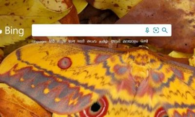 Bing will be a search alternative to Google on Android from October 1