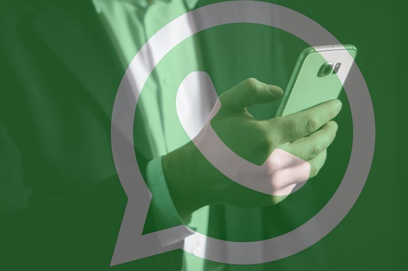 How to check the WhatsApp conversations of my children from my cell phone
