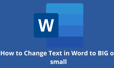 How to Change Text in Word to BIG or small