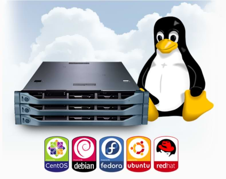 How to Make Your Own Server Using Linux